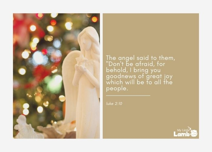 Luke 2:10 WEB The angel said to them