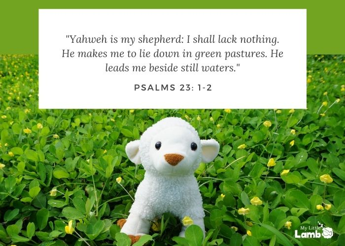 """Psalm 23:1-2 """"Yahweh is my shepherd: I shall lack nothing. He makes me  lie down in green pastures. He leads me beside still waters."""""""
