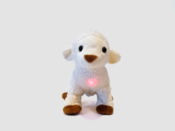 My Little Lamb